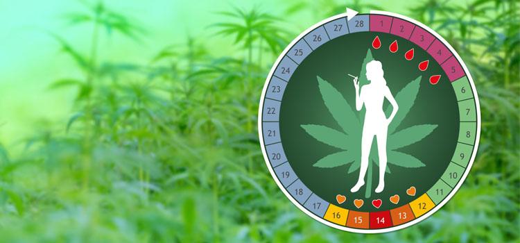 Cannabis y menstruación